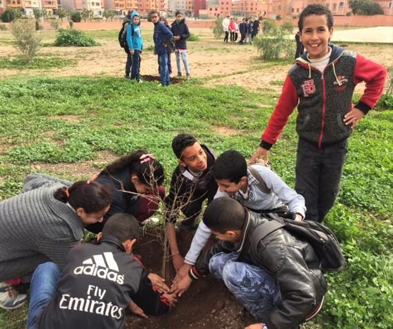 #379 Morocco: Carob Tree Planting and GPS Project Support